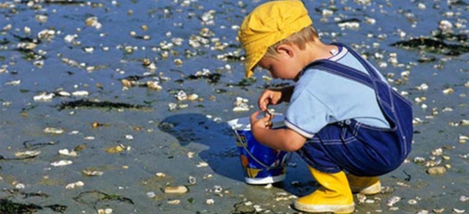 enfant-pêche-à-pied